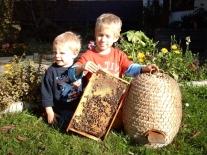 Kopie von kinderbienen06 (640x480)